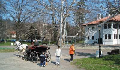 Miodrag Popović - Turistička organizacija Beograda