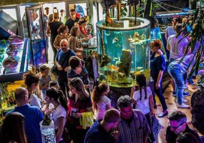 akvarijum i tropikarijum