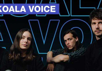 Koala Voice